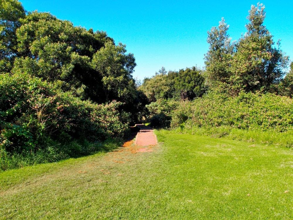 Path from carpark down to Mystics Beach