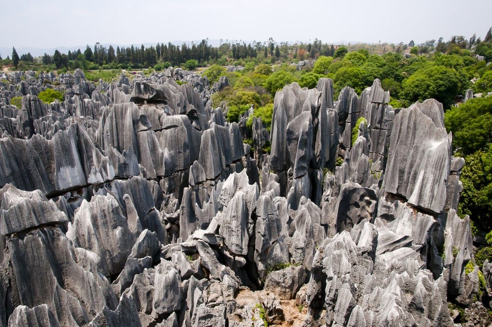 Stone Forest China