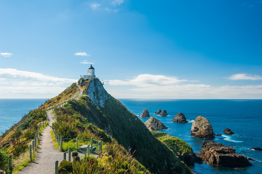 Best Time of Year to Go to New Zealand - Nugget Point