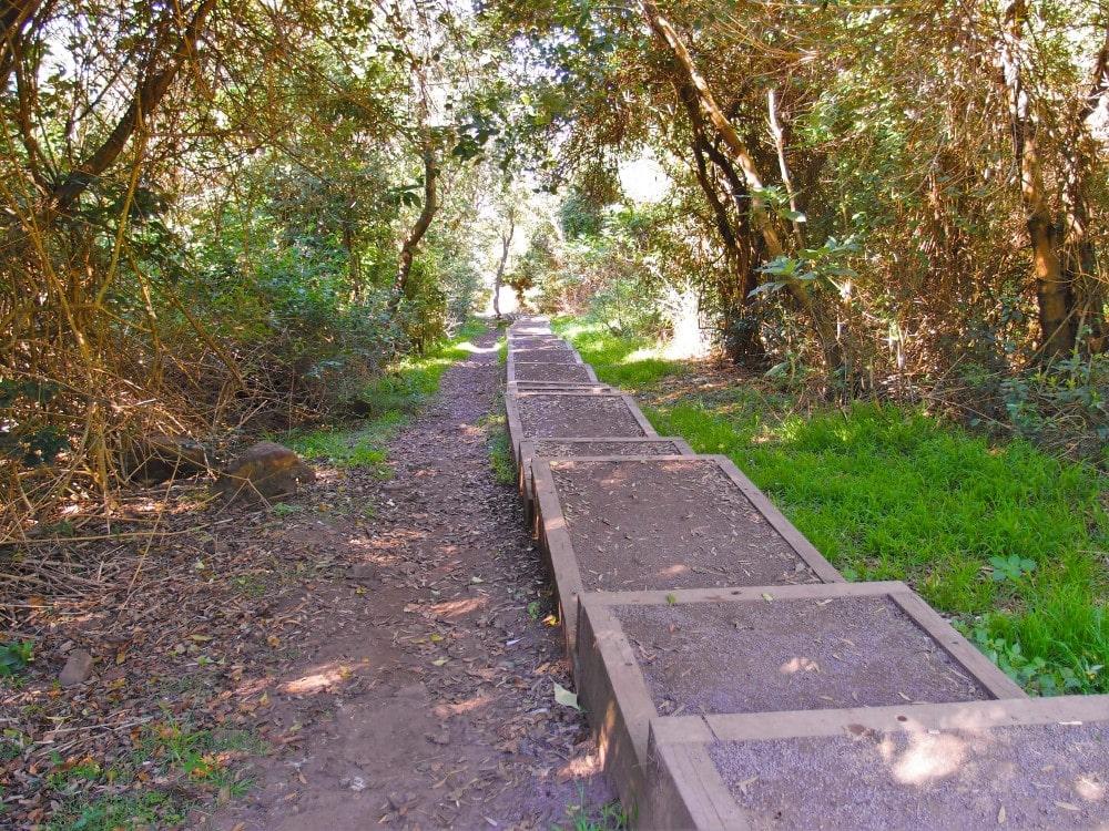 Long way down the steps to Mystics Beach
