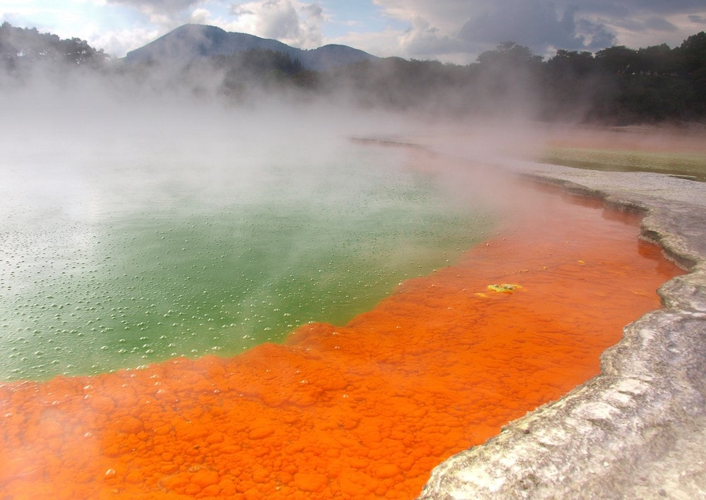 Best Time of Year to Go to New Zealand - Wai-O-Tapu