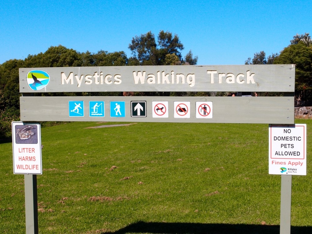 Mystics Beach offers walking tracks, fishing adn other activities