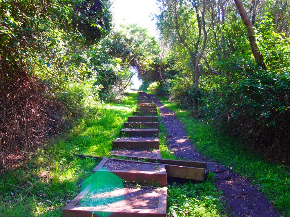 Way up same steps from Mystics Beach requires quite a bit of work. Only for the fit