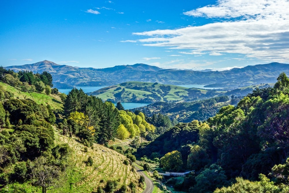 Things to Do in New Zealand South Island - Banks Peninsula