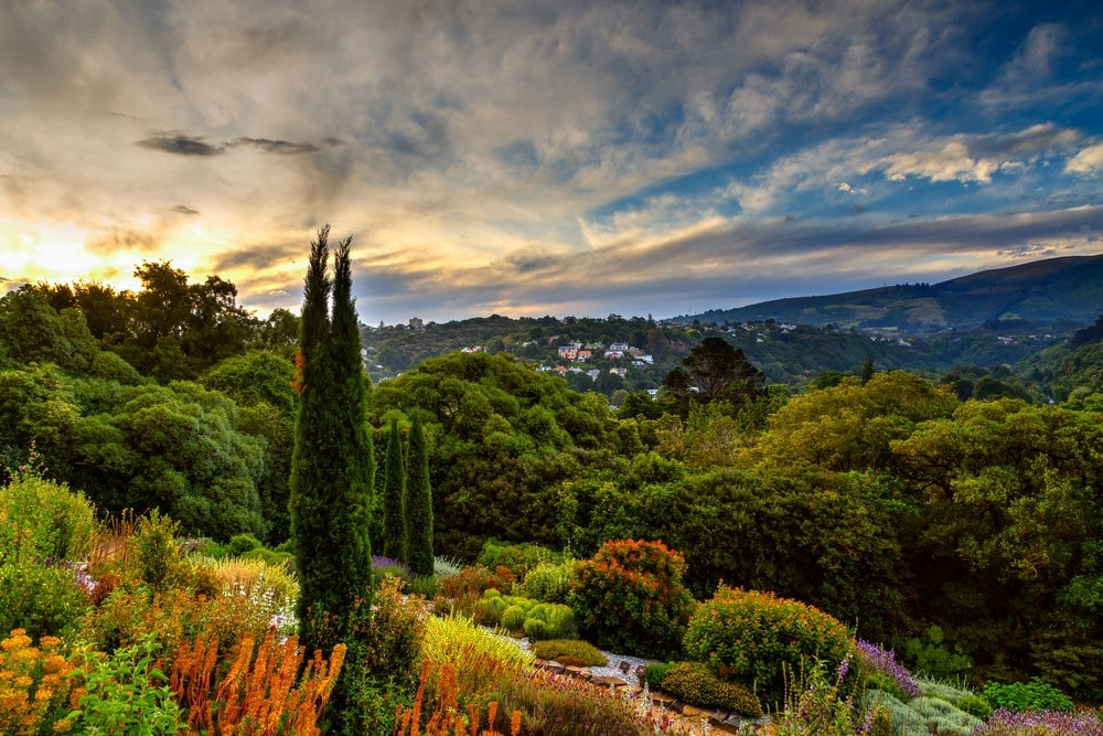 Best Place to Live in New Zealand - Dunedin