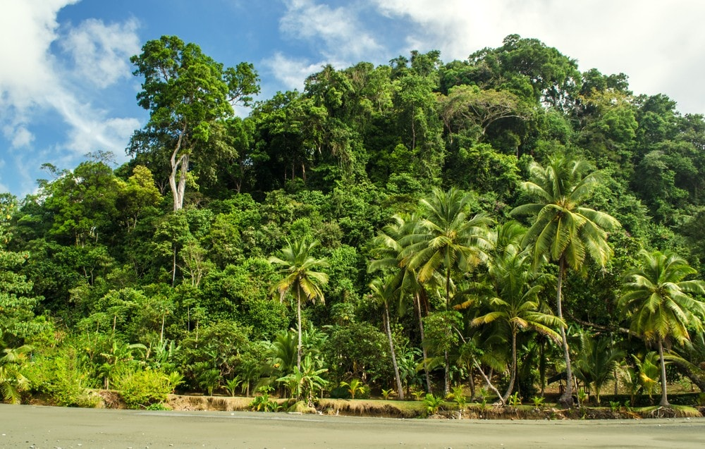 20 Most Amazing Places to Visit Before You Die - Osa Peninsula