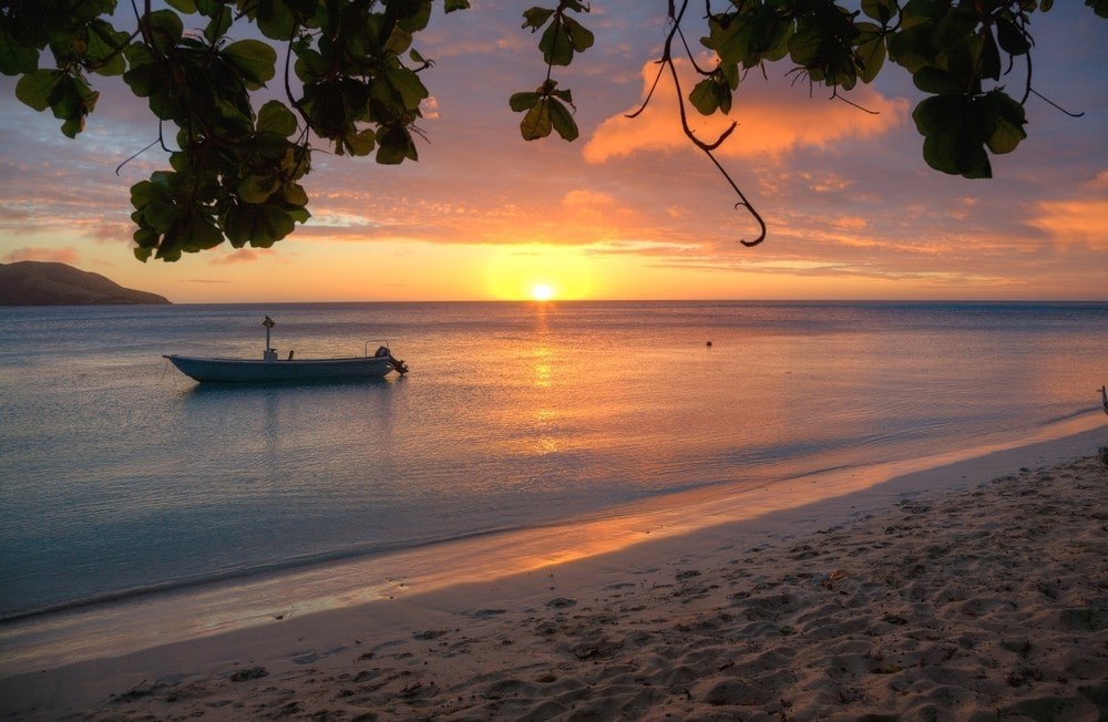 Things to do in Fiji Try kava