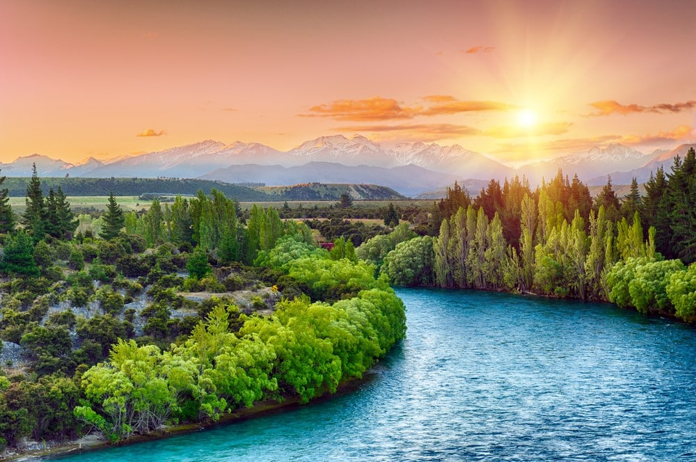 Traveling for free Work on organic farms - New Zealand