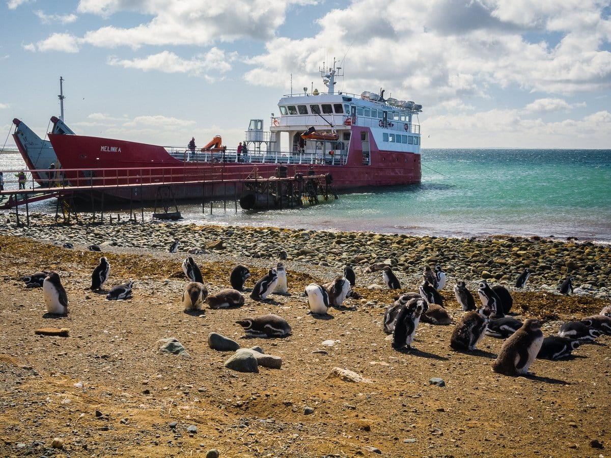 ship and penguins on Isla Magdalena