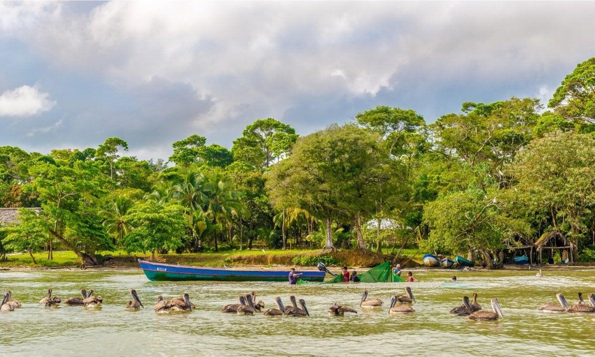 Rio Dulce National Park