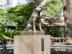 Hatchiko dog statue