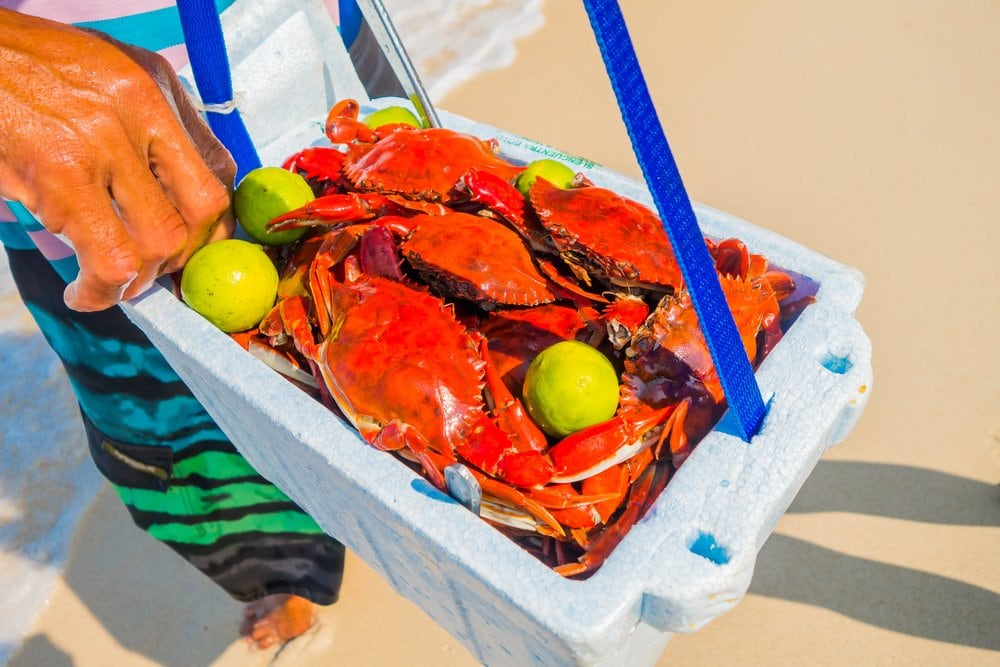 Crabs being sold on the beach at Playa Blanca