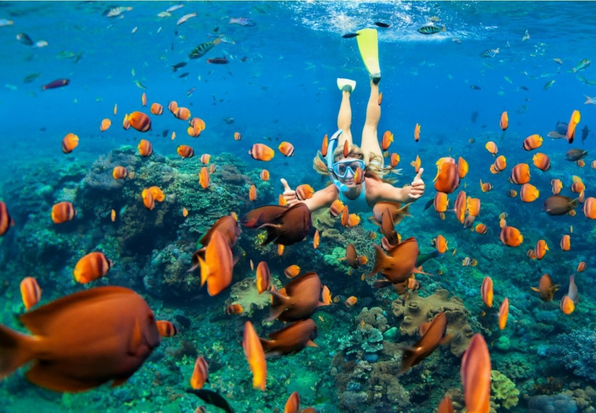 Snorkeling and surrounded by fish