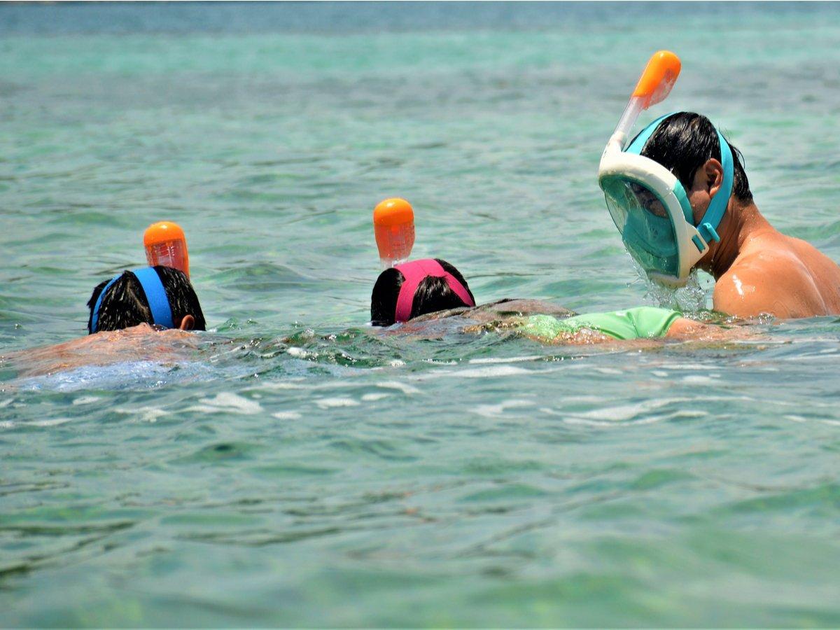 people snorkeling in the water